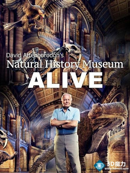 大卫爱登堡的博物馆奇妙夜 3D David Attenborough\'s Natural History Museum Alive.jpg