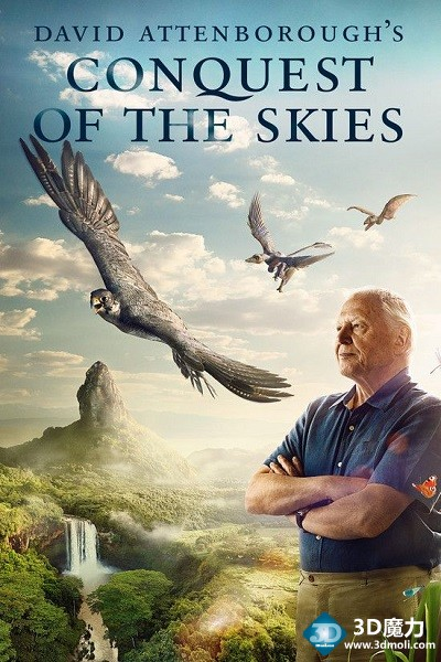 大卫爱登堡之翔服天空  3D David Attenborough Conquest of the Skies.jpg